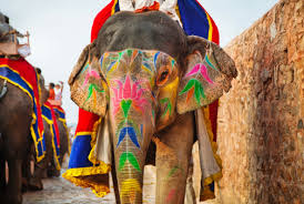 Elefante de Jaipur