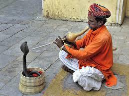 Este senhor fica em Jaipur, perto do palácio e fica muito bravo se você só tira foto, filma e não coloca uns trocados na caixinha dele. Ele xinga os turistas e eu presenciei isso!