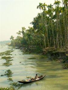 bangla5